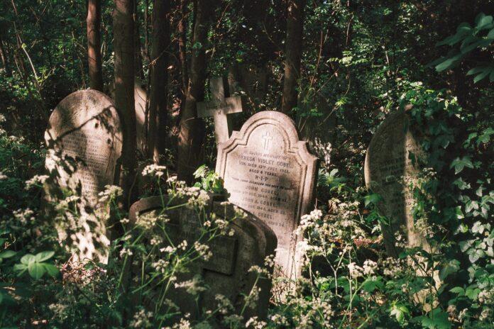 tomb, grave
